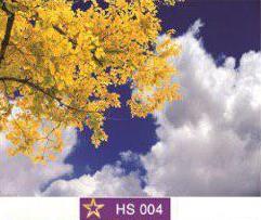 آسمان مجازی|HS004