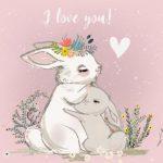 بچه خرگوش و مادر