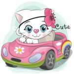 بچه گربه تو ماشین