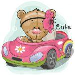 تدی در ماشین