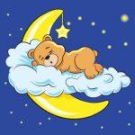 خرس خوابیده
