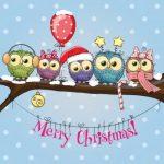 جغد و کریسمس