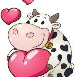 گاو و قلب