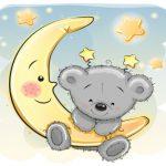 بچه خرس و ماه